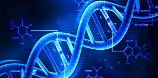aberrações cromossomicas