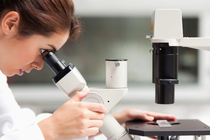 polimerase microscopio pcr reacao em cadeia