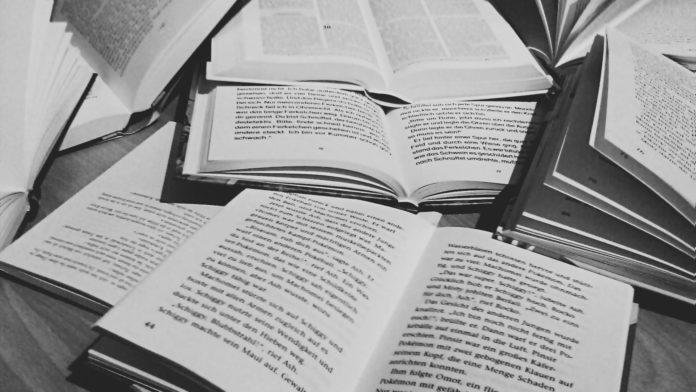 Direitos constituição livro aberto trabalhos escolares