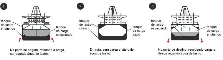 moluscos_lastro_bio_diversidade
