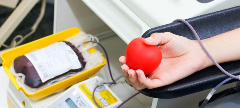 Dia Nacional do Doador de Sangue – 25 de Novembro